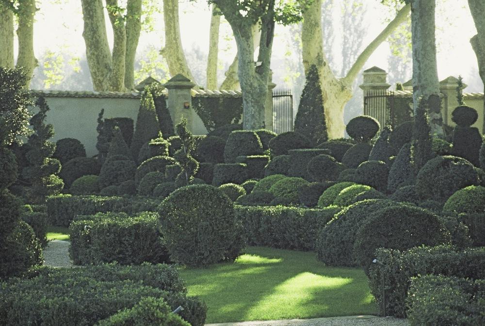 Topiary Border 2.jpg
