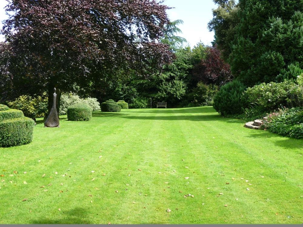 Main Lawn.jpg