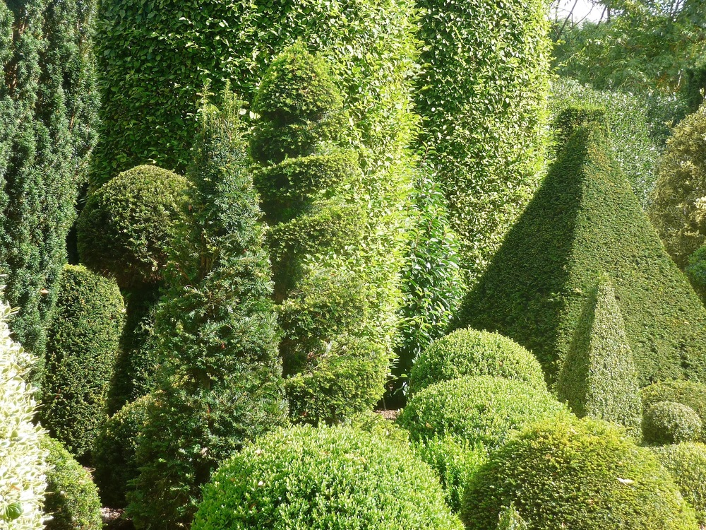 Norton Court Topiary border.jpg