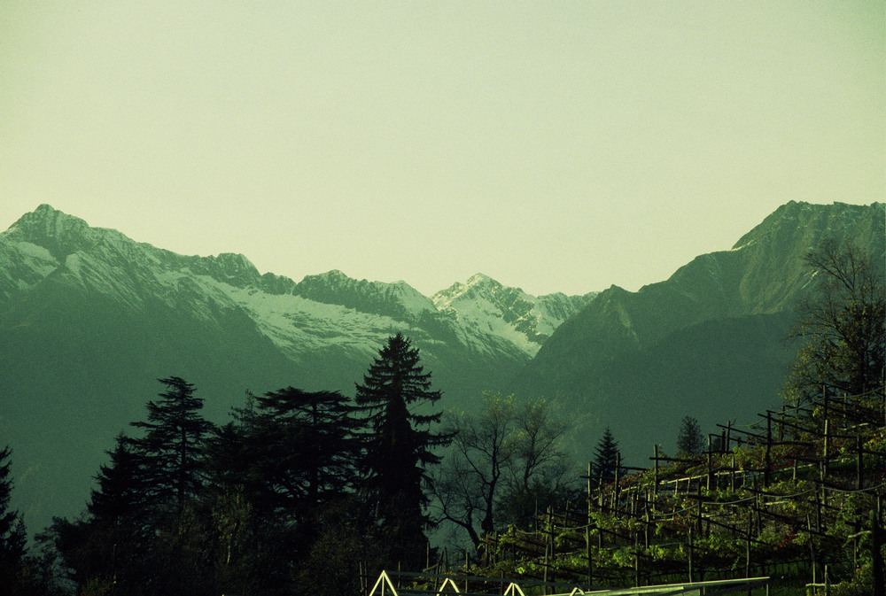View of the Alps from the Garden.jpg