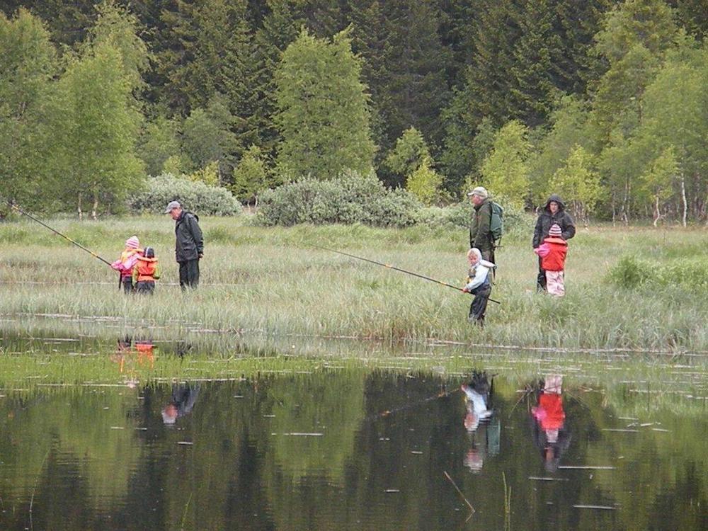 fiske-i-volavatnet-3.jpg