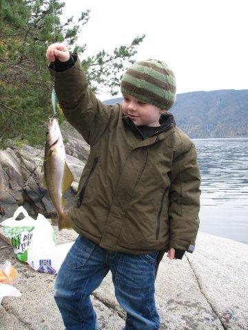 fiskelukkegrindsstrondi2.jpg