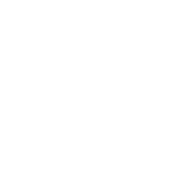 Wedding Photography | Portrait & Editorial Photography | Hilo & Ginger