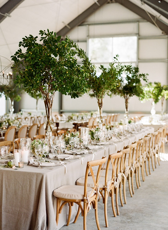 Indoor trees are a fresh and creative way to bring the outdoors in. Photo Source:  Once Wed .