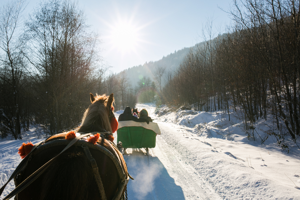 Horse-drawn sleigh rides are a relaxed and memorable activity for your wedding guests to enjoy pre- or post-wedding, and will allow them to experience the beautiful countryside of Perth County.