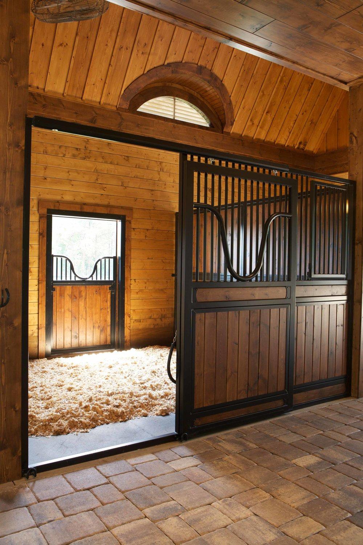 equestrian-25.jpg