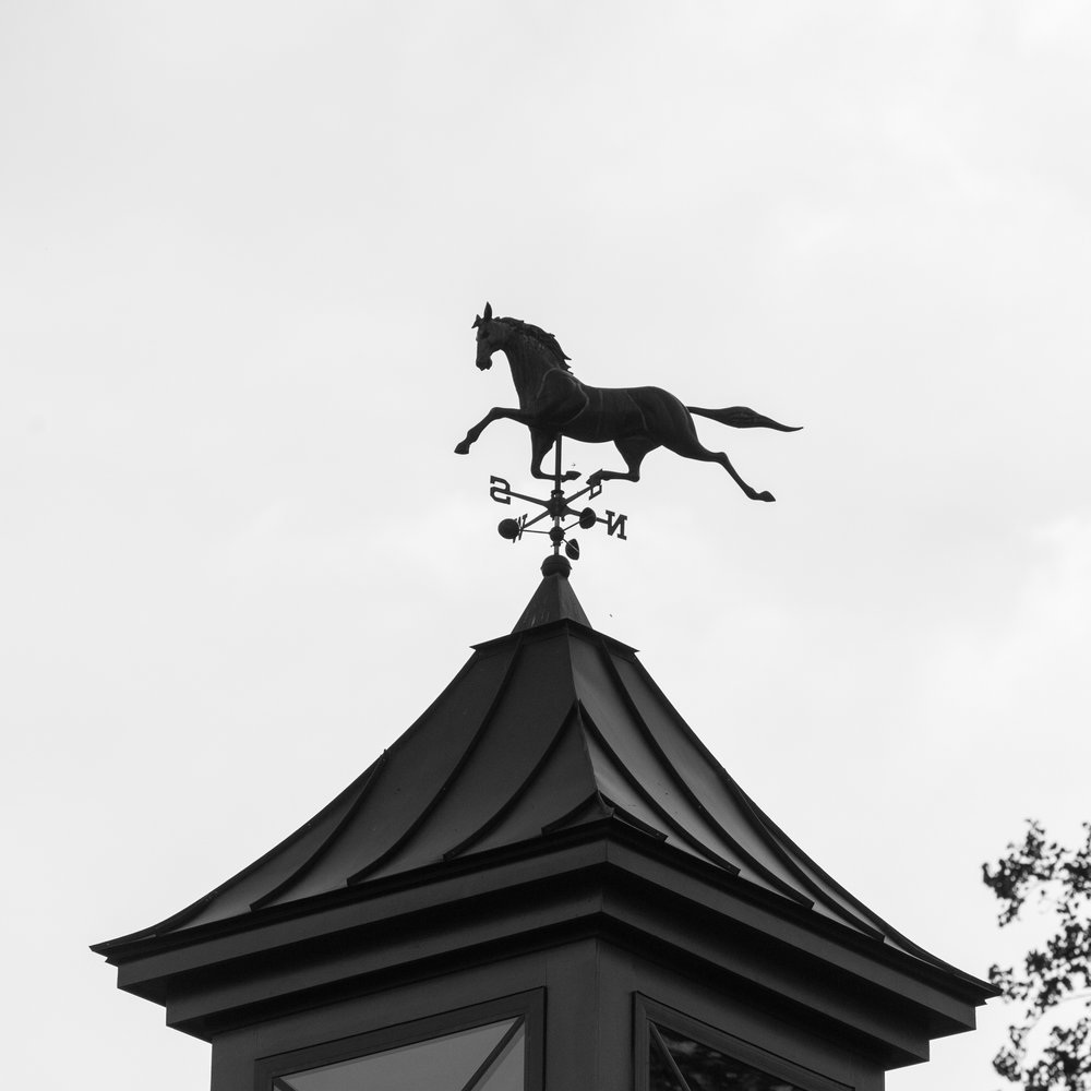 equestrian-36.jpg