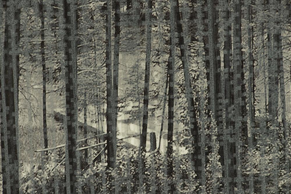 Seeing Vermont II (detail)