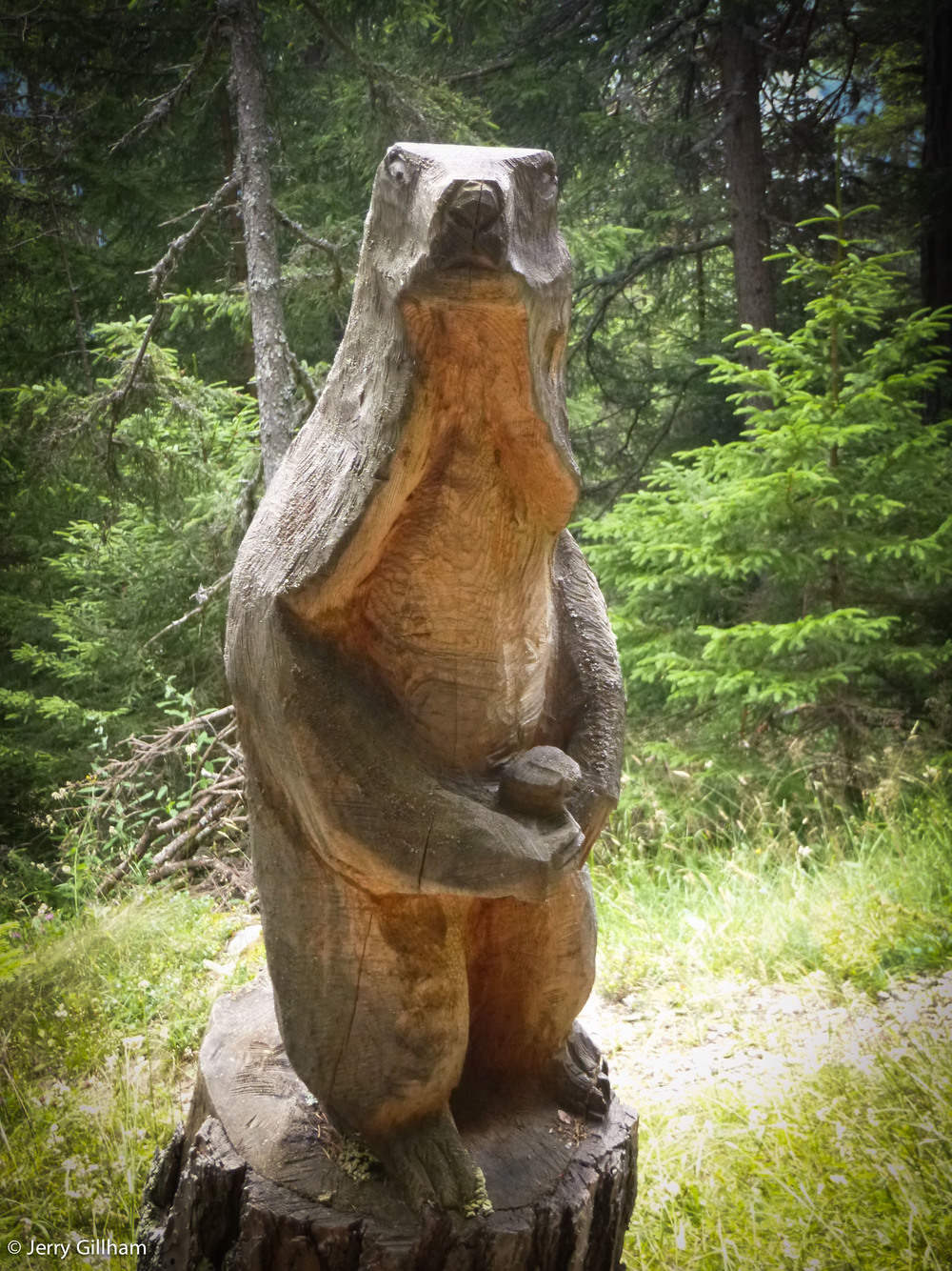 Furious wooden marmot. Mind you, it appears he's been interrupted at a rather personal moment.