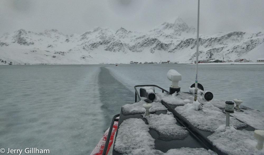 This was a weird day to be out - the snow fell so heavily it was sitting in a layer on the surface of the sea. Clearing it off the boats took a while but driving through it was simple enough...