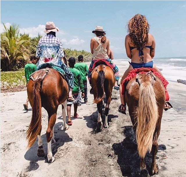 Horseback rides along the Caribbean Sea... what a way to experience the beauty of this raw coastline and connect with Colombia's culture.⠀ ⠀ !Vamos a Colombia with @lotusretreats March 11-16 with @lorenlotus & @katysyogaflow for the self-realization & empowerment yoga retreat at @gitanadelmarbeachresort book your spot now on seekretreat.com⠀ .⠀ .⠀ .⠀ .⠀ .⠀ #travelwithmeaning #soulfuladventure #inspiration #travel #wanderlust #adventuremore  #intothewild #alifealive #stayandwander #adventurevisuals #adventurethatislife #liveadventurously #letsgosomewhere #wherewillwegonext #livewild #doyoutravel #theglobewanderer #ourplanetdaily #discoverearth #artofvisuals #theglobewanderer #retreat #yoga #yogaretreat #yogaeverywhere #seekgrid⠀