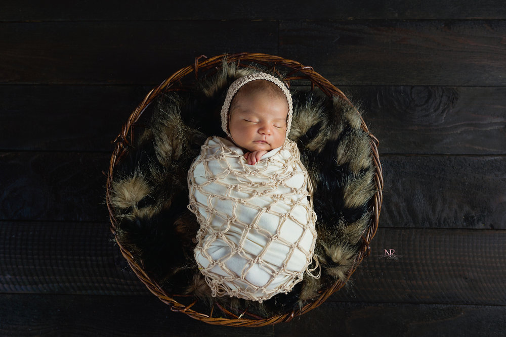 newborn swaddled in a bowl