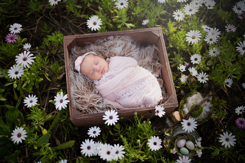Newborn In Flowers