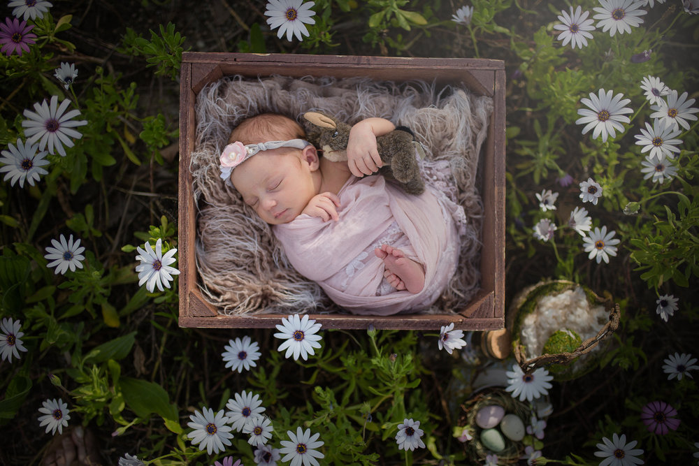 Easter Newborn In Flowers