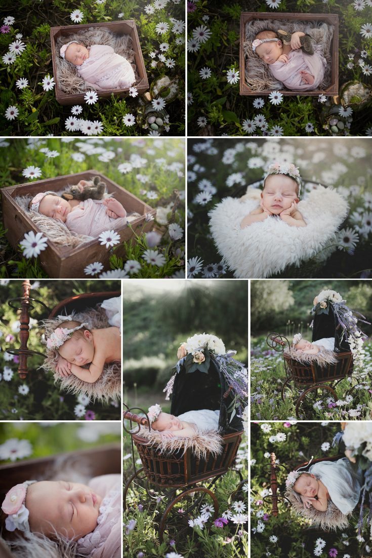 Springtime Newborn Session