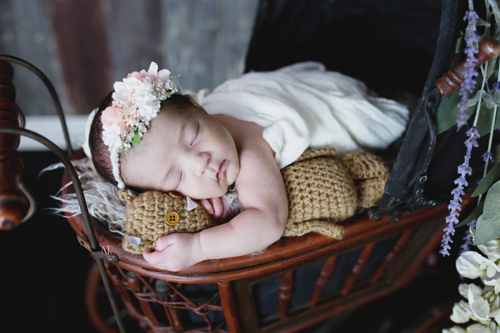 Newborn Baby girl in an antique doll pram holding a teddy wheel wearing a crown!