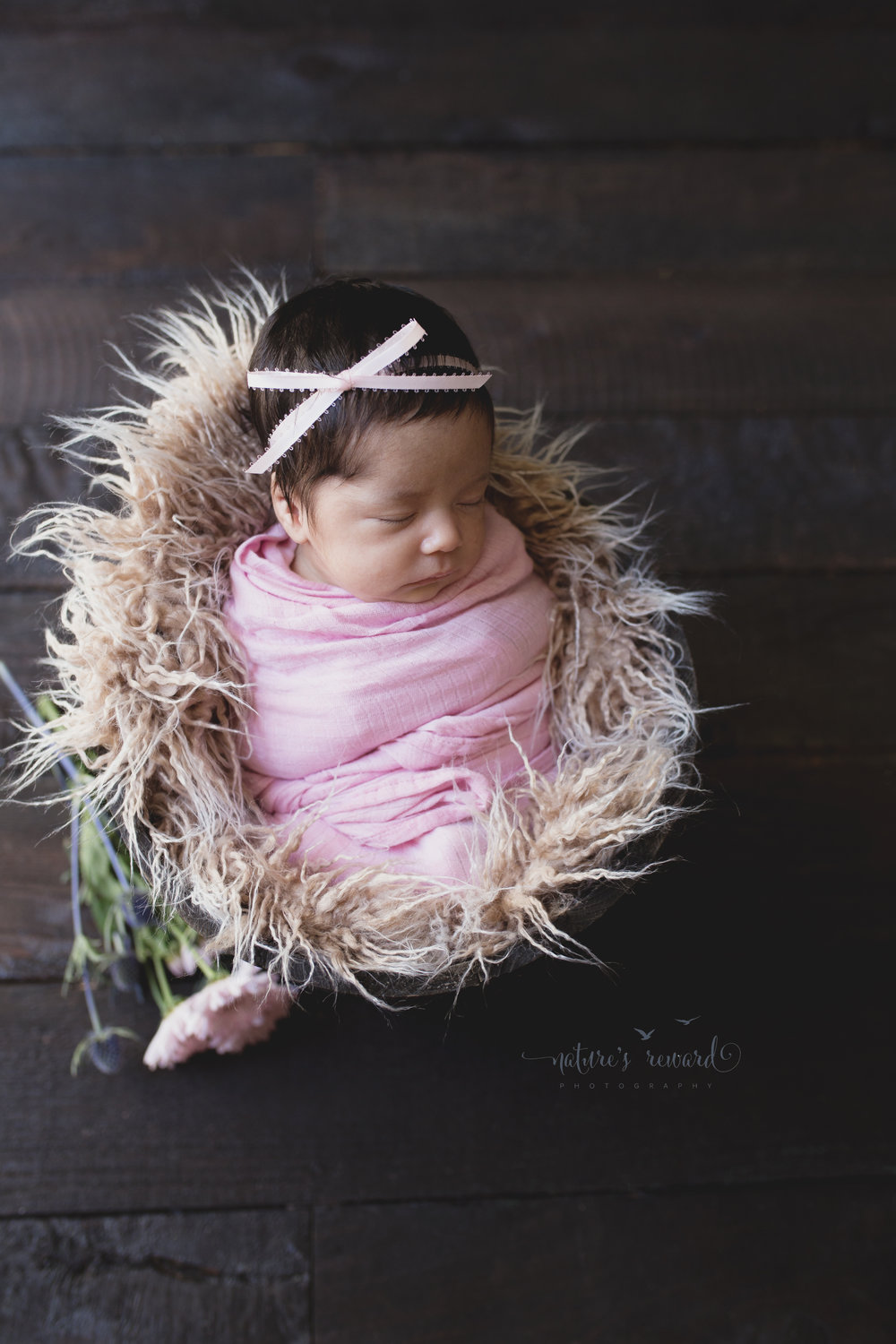 Baby in a bucket.  She is wrapped in her own newborn wrap.  She was unsettled so we wrapped her in a blanket that smelled of her and her mother.  The pink.  Pink ribbon in her hair, and pink carnation adorn the floor in this newborn image. Image by Nature's Reward Photography