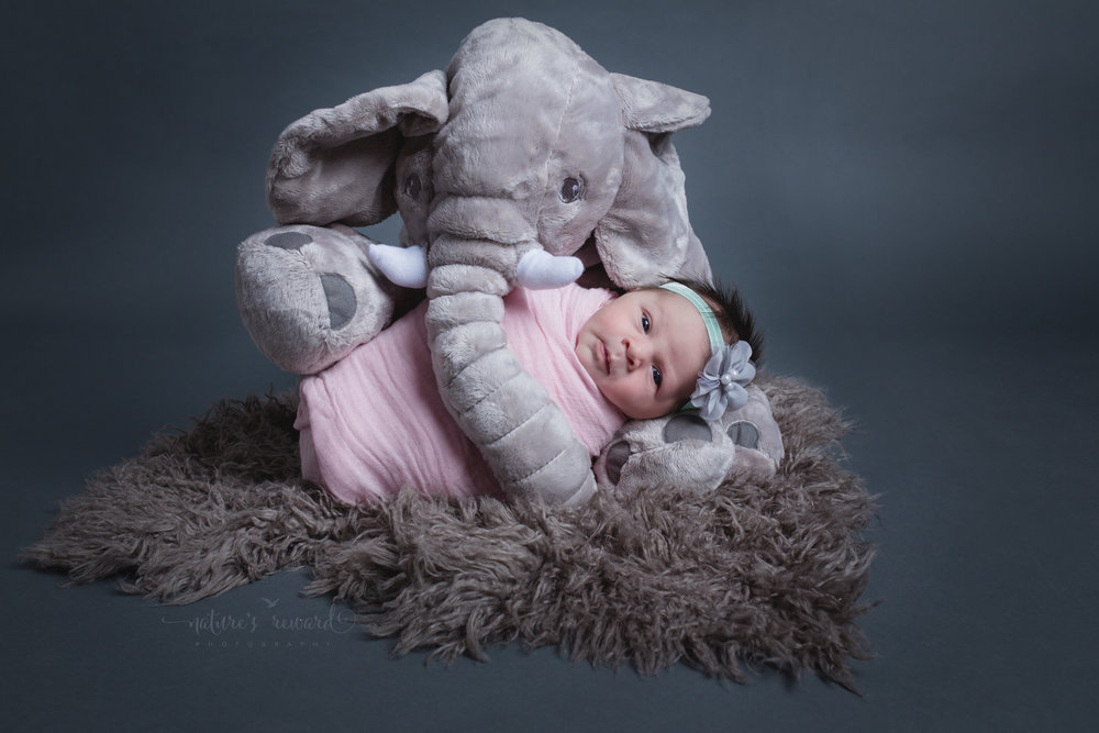 And here she is!   Her parents Brought in the elephant, the wrap and bow.  I absolutely adore this image!