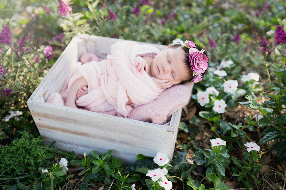 Baby in box and flower patch.