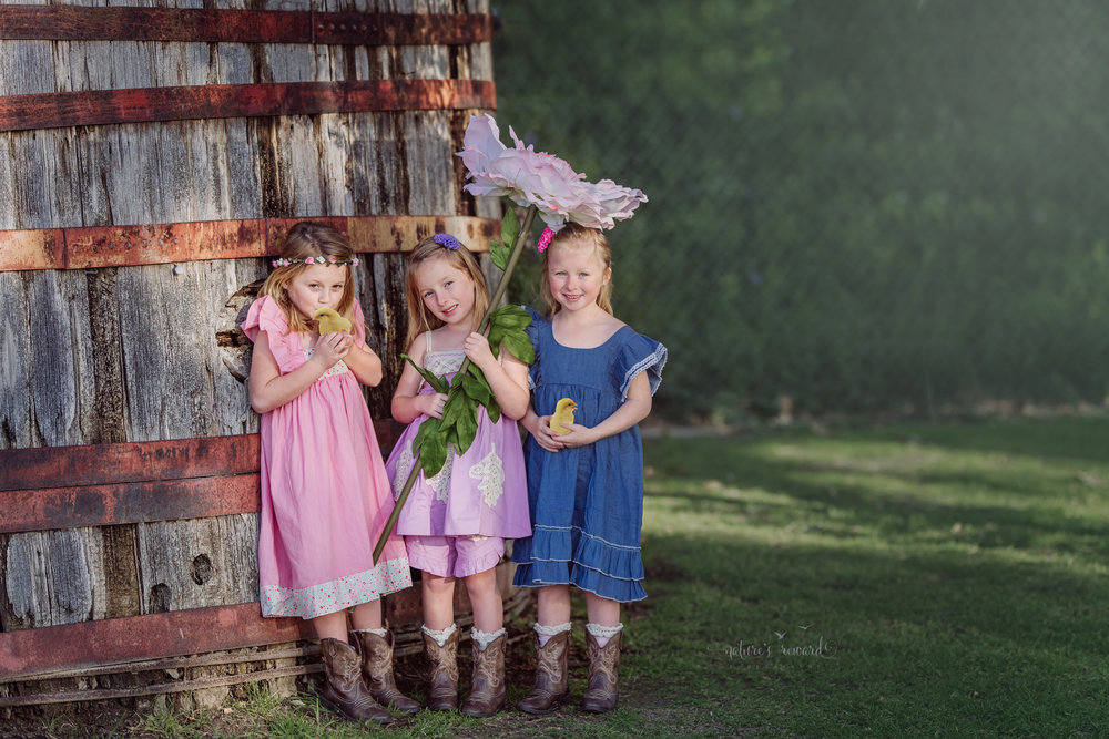 The triplets in one photograph wearing cowgirl boots and cute spring dresses in pink, purple and blue holding chicks and using a flower for shade by Nature's Reward Photography, a Southern California Photographer