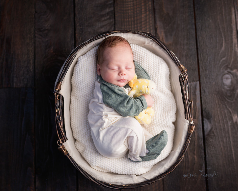 Newborn baby boy wearing greens and white, an outfit brought from home, snuggling his yellow baby giraffe nestled into a basket by Southern California newborn and family photographer Nature's Reward Photography