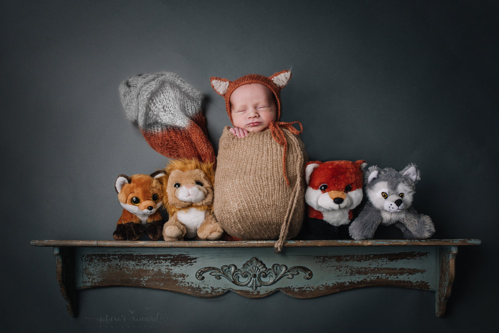 This is an award winning image and can be viewed on  This Magazine  This image features this sweet baby boy wearing a fox bonnet and has a tail digitally manipulated on a rustic green shelf with his woodland friends. A newborn portrait by Nature's Reward Photography