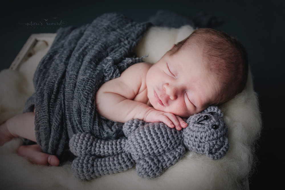 Sweet baby boy and those stupid cute kissy lips while holding his grey teddy wrapped in grey in a box of white wool stuff in this newborn portrait by Nature's Reward Photography