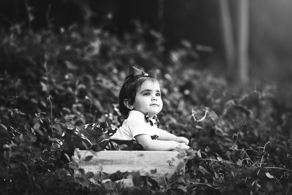 Black and white portrait of a one year old girl sitting inside a white box among the ivy thicket.  Portrait by Nature's Reward Photography