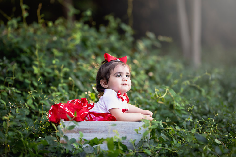 One year little girl in red and white tutu sitting an a white crate while in a thicket of ivy.  Portrait Bu Nature's Reward Photography