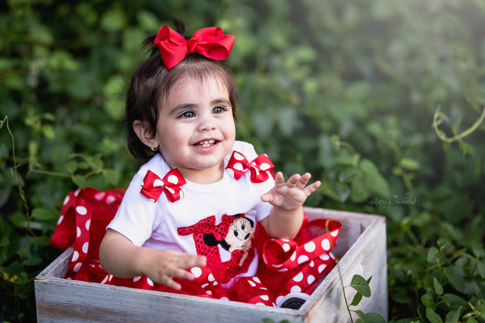 She is one darling baby girl in Minnie shirt and tutu sits in a box in an ivy thicket.  A portrait By Nature's Reward Photography