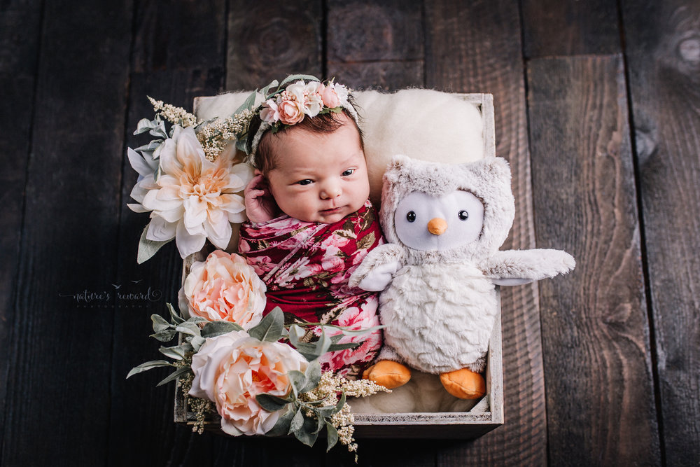 Newborn baby girl wrapped a red floral wrap wearing a flower crown while laying sweetly in a box with flowers and a her stuffed owl in the portrait photography session by Nature's Reward Photography