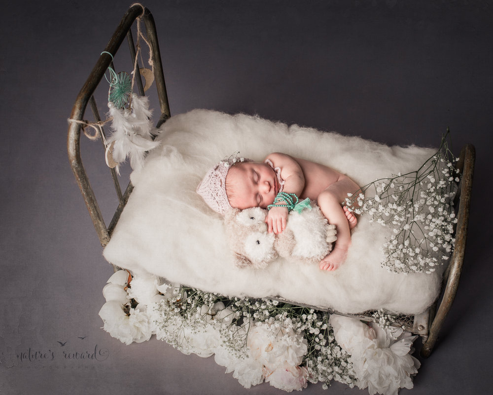 Newborn baby portrait in whites and soft pink, laying on a doll bed holding her owl. A Portrait By Nature's Reward Photography, a San Bernardino Family, Child, and Newborn Baby Photographer.
