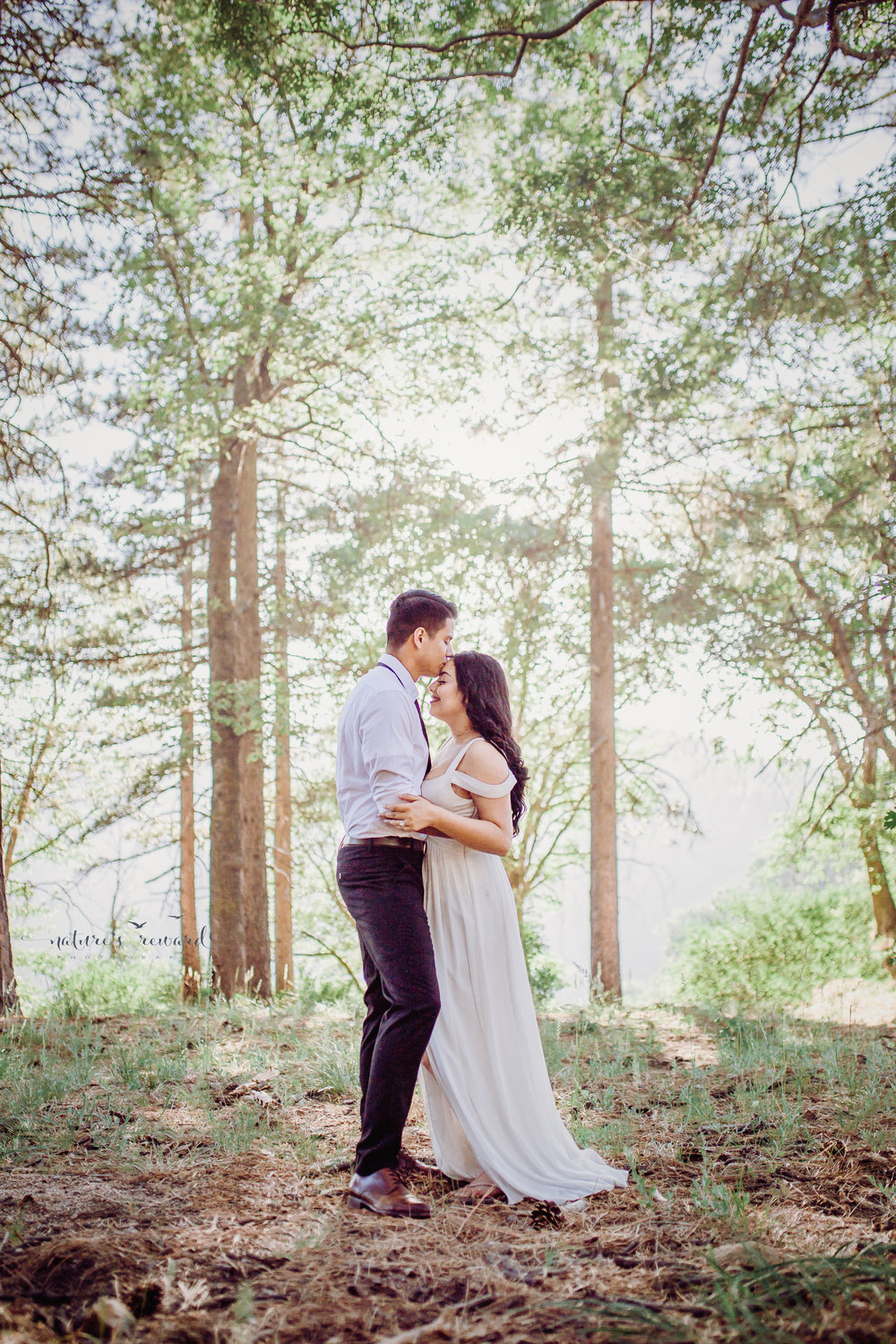 It looks like the branches of these trees are bursting into fireworks behind them in this bride and groom portrait by Nature's Reward Photography
