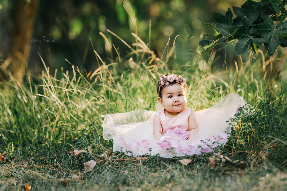 Gorgeous baby Girl in a lovely soft pink and lace gown full of flower petals surrounded by lush greenery in this sitter portrait by Nature's Reward Photography