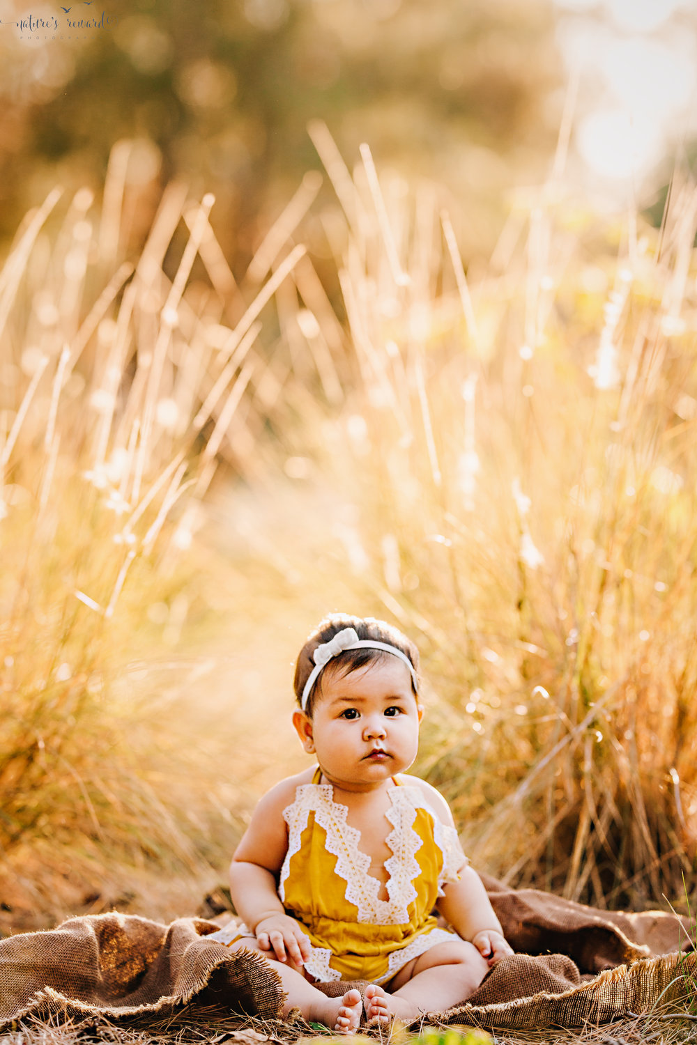 Lovely baby in a yellow and white lace romper in the tall yellow reeds wearing a white hair bow showing off her baby rolls in this sitter portrait by Nature's Reward Photography