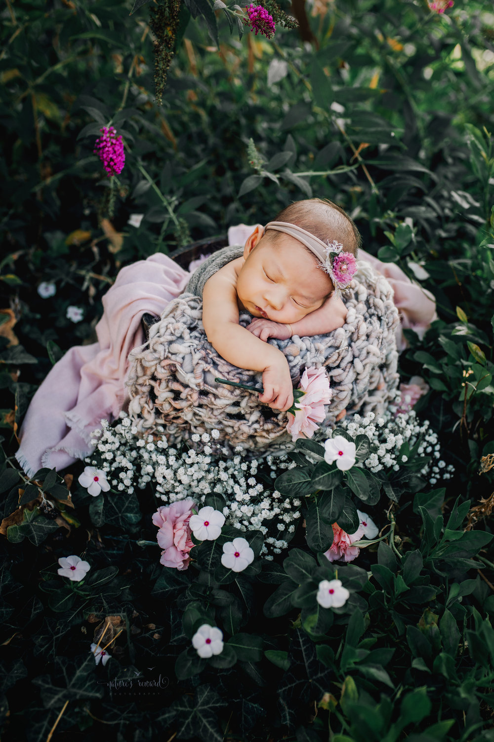 Gorgeous baby Newborn Girl in a bucket with pink and grey basket stuffers in a bucket in a garden surrounded by lush greens and white flowers, purple flowers, and pink carnations and my favorite baby breath in this portrait by Nature's Reward Photography.