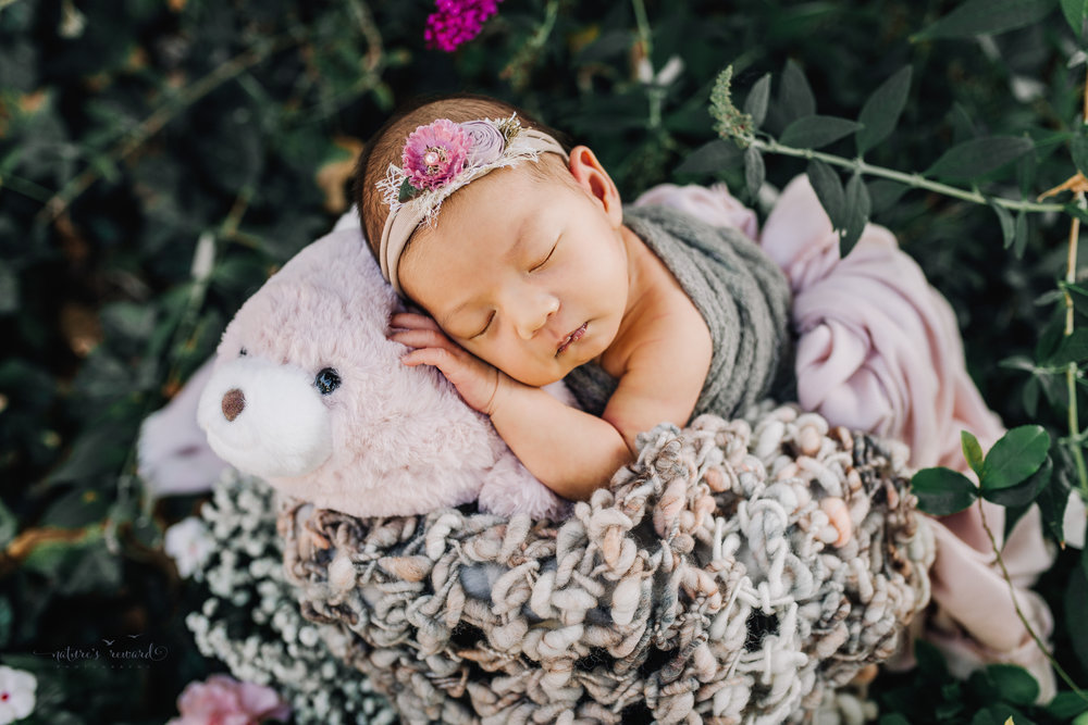 Gorgeous baby Newborn Girl in a bucket with pink and grey basket stuffers in a bucket in a garden surrounded by lush greens with her pink stuffy from home in this portrait by Nature's Reward Photography.