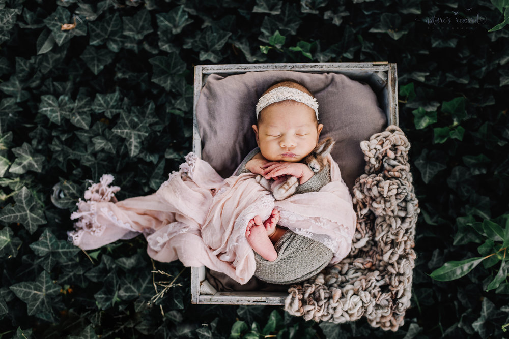 Gorgeous baby newborn girl swaddled in pink wearing a white tie back and in a garden surrounded by lush greens  in this portrait by Nature's Reward Photography