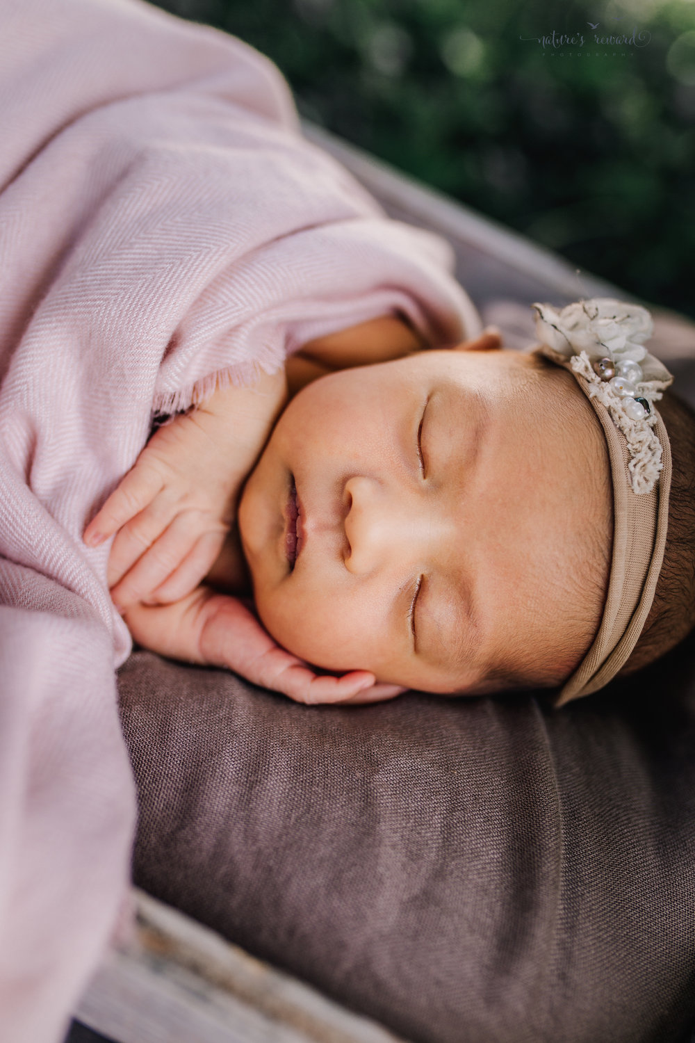 Lovely baby newborn girl with a pink blanket wearing a white tie back and in a garden surrounded by lush greens in this portrait by Nature's Reward Photography
