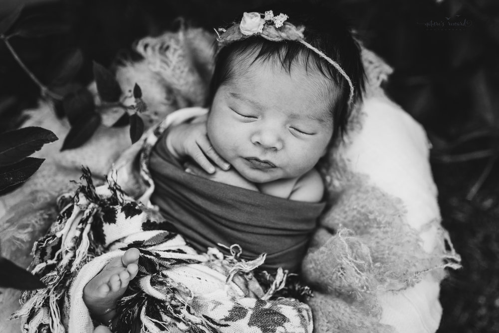 Black and white portrait of newborn baby girl in a garden by Nature's Reward Photography.