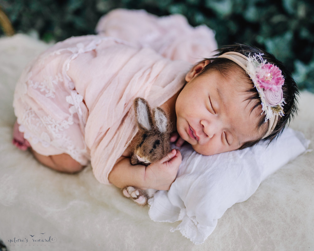 Close of of newborn Baby girl swaddled in pink holding a felt bunny on a bed in a bed of ivy. A portrait by Nature's Reward Photography