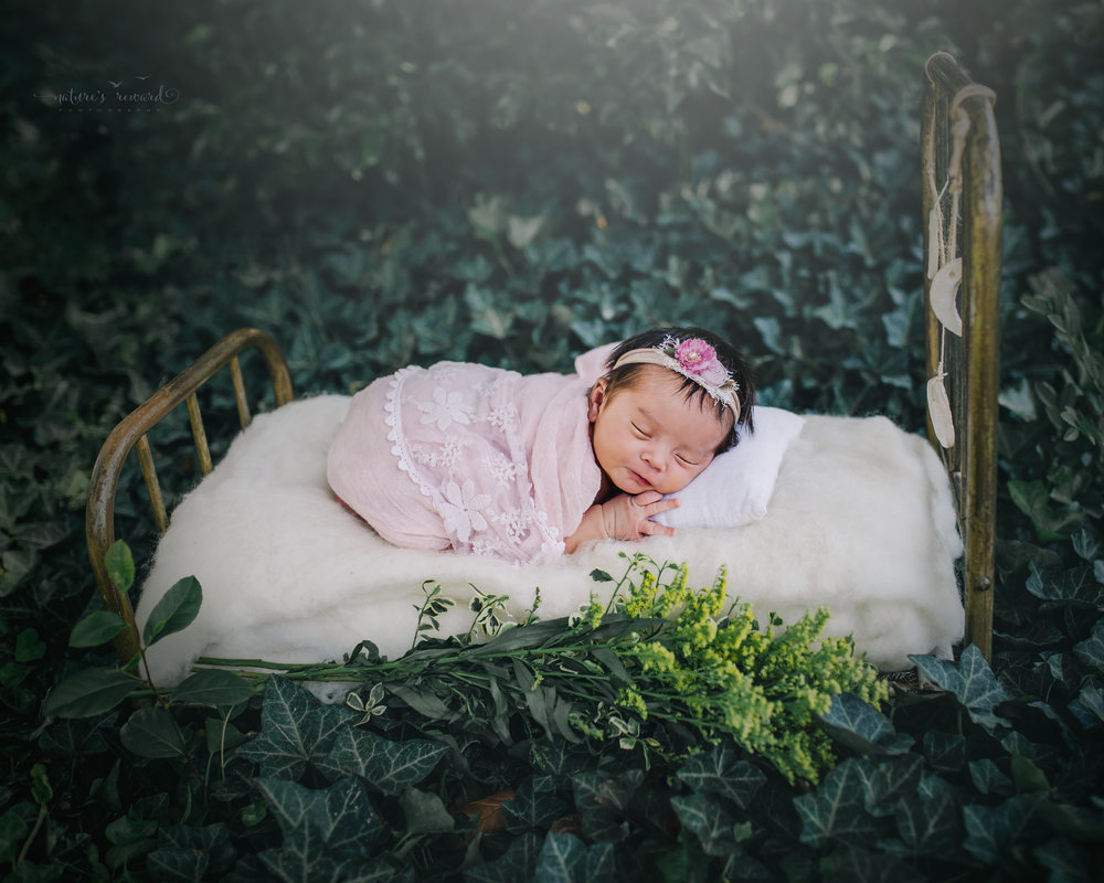 Newborn Baby girl swaddled in pink holding a felt bunny on a bed in a bed of ivy. A portrait by Nature's Reward Photography