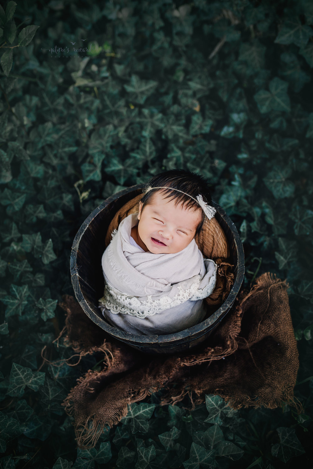 This sweet newborn baby girl in subtle neutral lace adorned wrap in a brown bucket in a bed of ivy. A portrait by Nature's Reward Photography