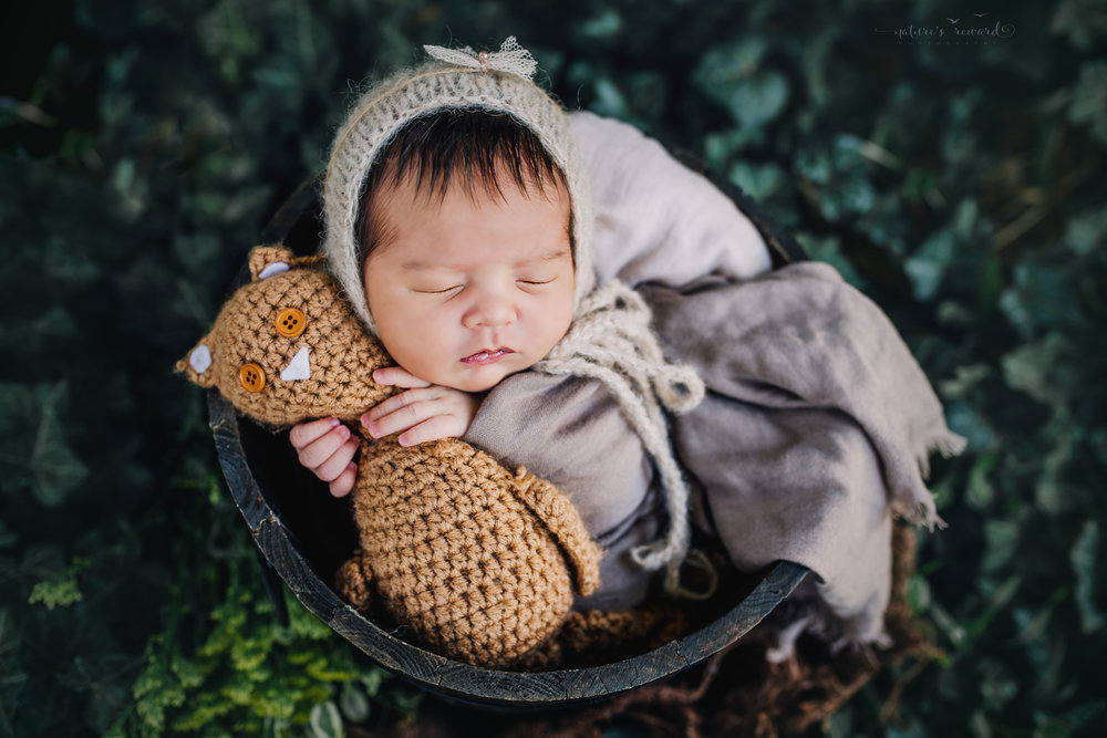 Gorgeous newborn baby girl swaddled in tan wearing a tan bonnet while holding a teddy nested in a bucket in an ivy garden. A portrait by Nature's Reward Photography