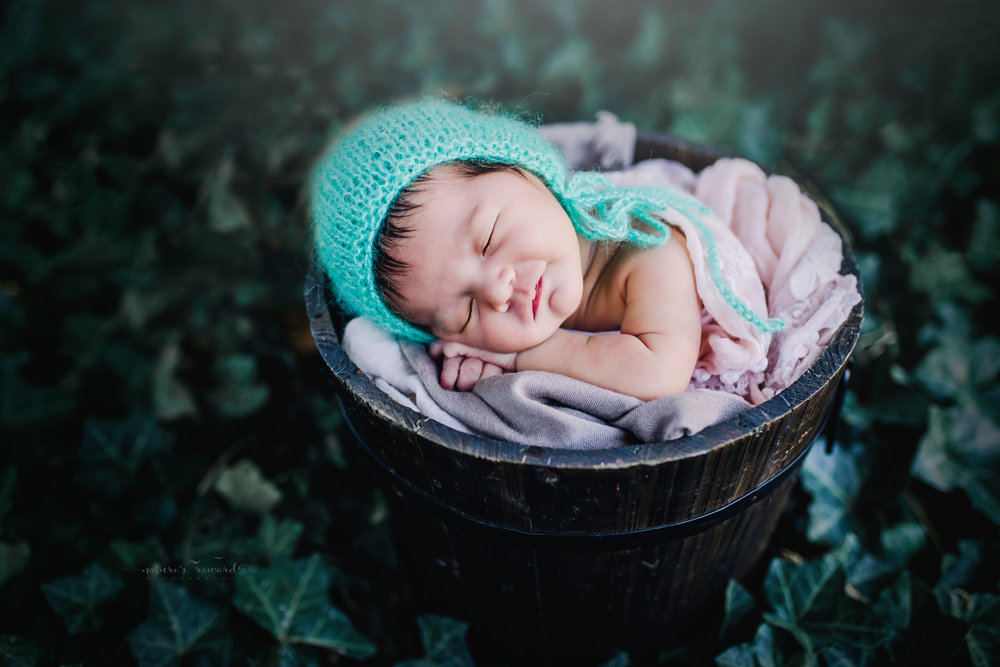 Newborn Baby girl in a bucket wearing a teal bonnet in an ivy garden in this portrait by Nature's Reward Photography