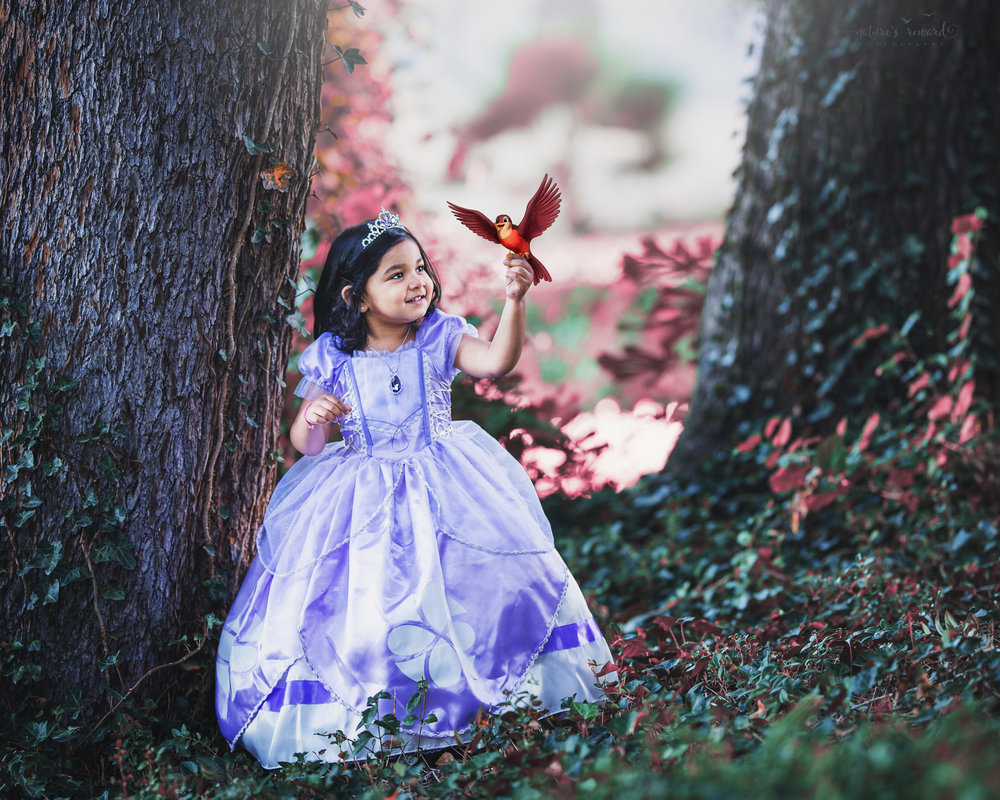 Inspired by Disney's Sophia the First Cartoon, this little one is a princess for her 3rd birthday session! Bird is from Sophia the first cartoon.   A Portrait By Nature's Reward Photography