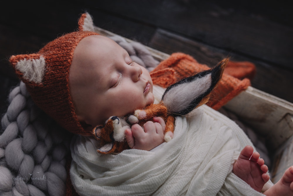 Two month old baby boy newborn baby boy session in a box on a wood floor wearing a fox hat and holding baby fox stuffed animal- a portrait by Nature's Reward Photography