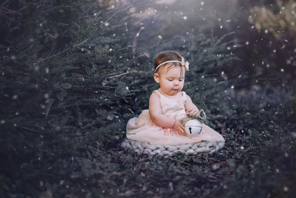 6 month old little girl during her sitter session portrait magical Christmas edit by Nature's Reward Photography