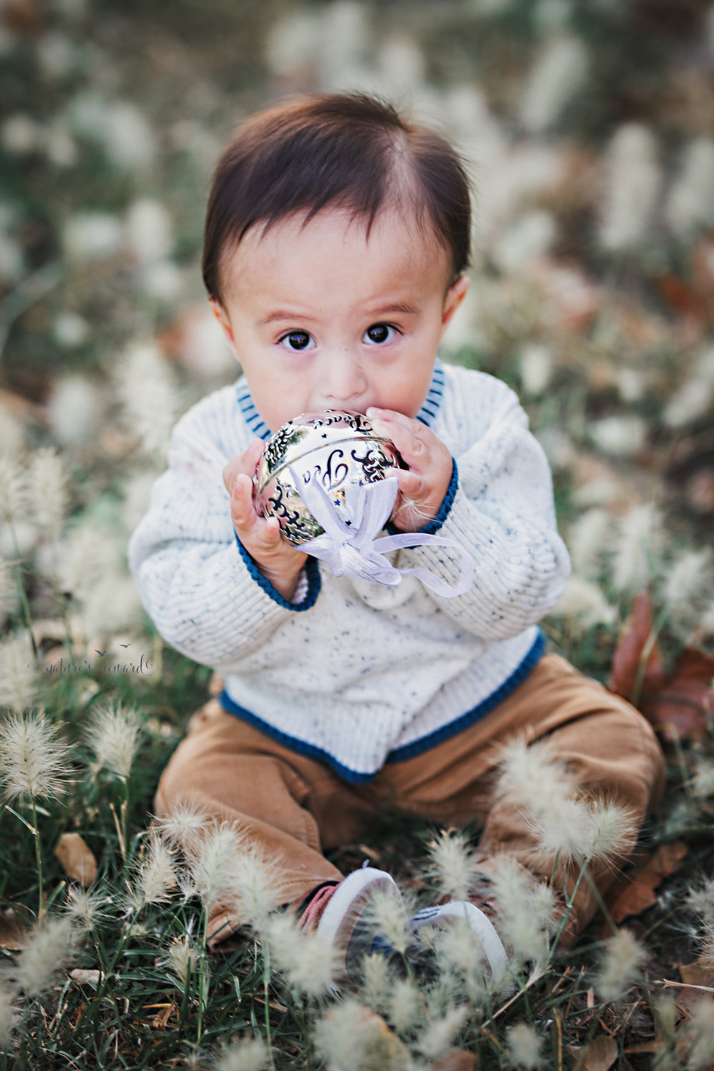 Beautiful 6 month old baby boy holding a silver bell- a sitter portrait by Nature's Reward Photography