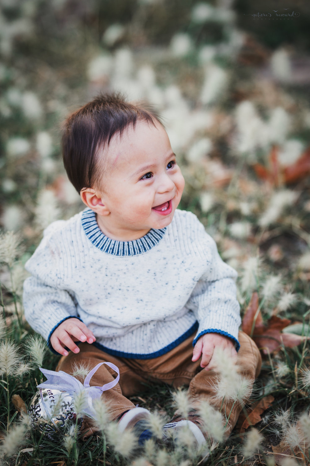 Darling 6 month old baby boy smiling away during his sitter portrait by Nature's Reward Photography